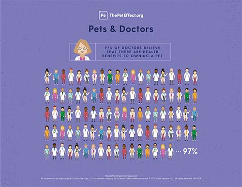 Did you know that 97% of doctors believe there are health benefits to owning a pet?