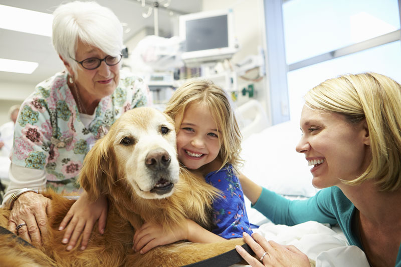 A girl in a hospital bed hugs a dog